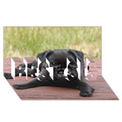 Alert Pug Puppy Best Sis 3d Greeting Card (8x4)  by trendistuff