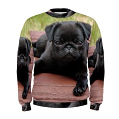 Alert Pug Puppy Men s Sweatshirts