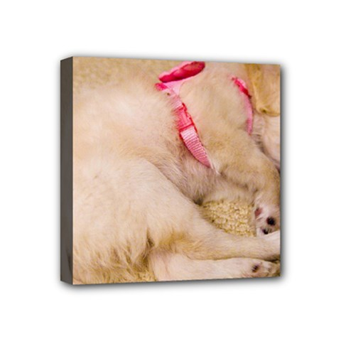 Adorable Sleeping Puppy Mini Canvas 4  X 4  by trendistuff