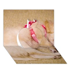Adorable Sleeping Puppy Apple 3d Greeting Card (7x5)  by trendistuff