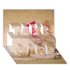 Adorable Sleeping Puppy Take Care 3d Greeting Card (7x5)  by trendistuff
