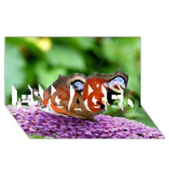 Peacock Butterfly Engaged 3d Greeting Card (8x4)  by trendistuff