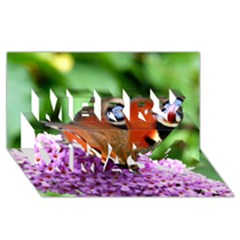 Peacock Butterfly Merry Xmas 3d Greeting Card (8x4)  by trendistuff