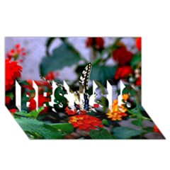 Butterfly Flowers 1 Best Sis 3d Greeting Card (8x4)  by trendistuff