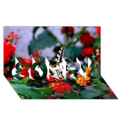 Butterfly Flowers 1 Sorry 3d Greeting Card (8x4)  by trendistuff