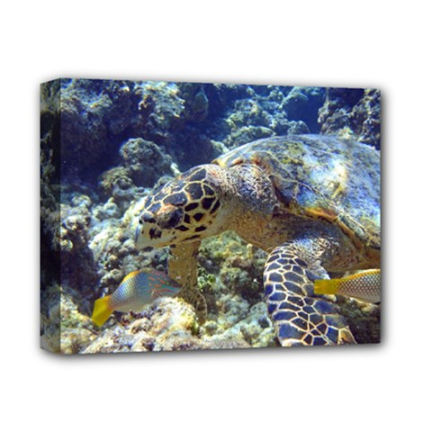 Sea Turtle Deluxe Canvas 14  X 11  by trendistuff