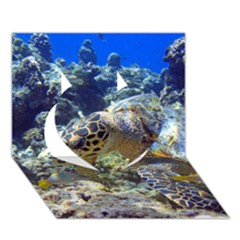 Sea Turtle Heart 3d Greeting Card (7x5)  by trendistuff