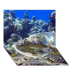 Sea Turtle Heart Bottom 3d Greeting Card (7x5)  by trendistuff