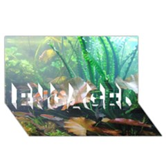 Marine Life Engaged 3d Greeting Card (8x4)  by trendistuff