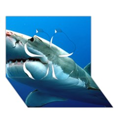Great White Shark 3 Clover 3d Greeting Card (7x5)  by trendistuff