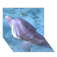 Dolphin 2 Circle 3d Greeting Card (7x5)  by trendistuff