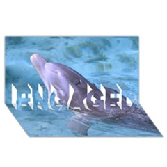 Dolphin 2 Engaged 3d Greeting Card (8x4)  by trendistuff