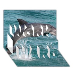 Dolphin Work Hard 3d Greeting Card (7x5)  by trendistuff