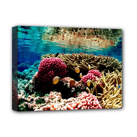 Coral Reefs 1 Deluxe Canvas 16  X 12   by trendistuff
