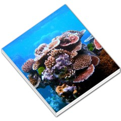 Coral Outcrop 2 Small Memo Pads by trendistuff