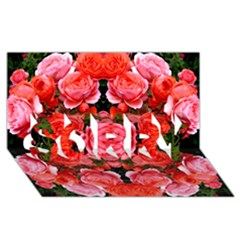 Beautiful Red Roses Sorry 3d Greeting Card (8x4)  by Costasonlineshop