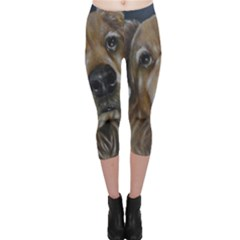 5b14156798824 Golden Retriever Leggings Shorts And Tights, Custom Golden Retriever ...