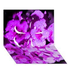 Dsc 01176665652 Clover 3d Greeting Card (7x5)  by timelessartoncanvas
