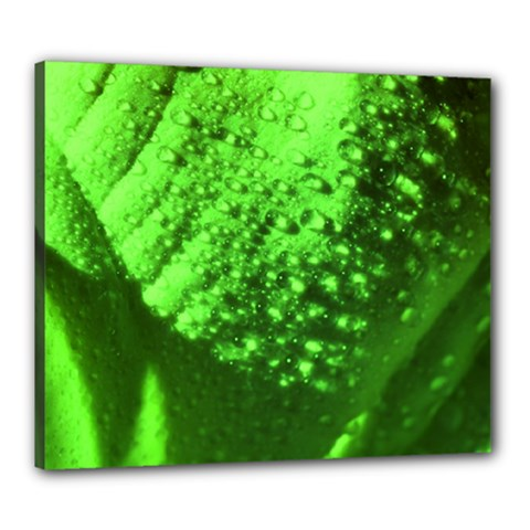 Green And Powerful Canvas 24  X 20  by timelessartoncanvas