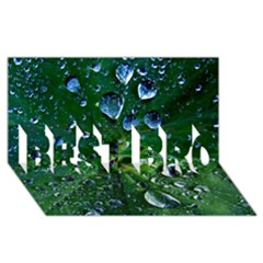Morning Dew Best Bro 3d Greeting Card (8x4)  by Costasonlineshop