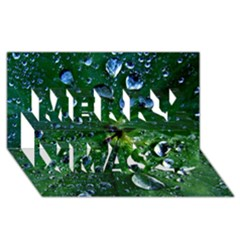 Morning Dew Merry Xmas 3d Greeting Card (8x4)  by Costasonlineshop