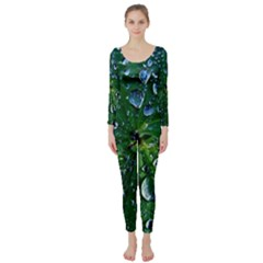 Morning Dew Long Sleeve Catsuit by Costasonlineshop