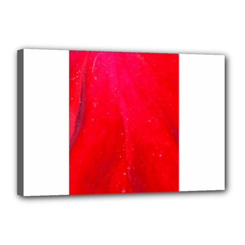Red And Beautiful Canvas 18  X 12  by timelessartoncanvas