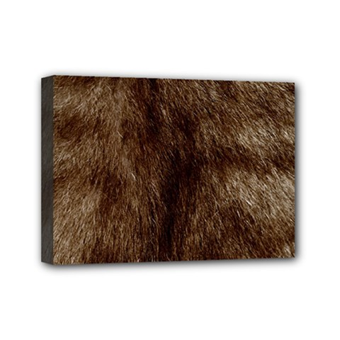 Silber Tiger Fur Mini Canvas 7  X 5  by timelessartoncanvas