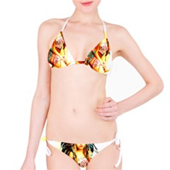 Indian 16 Bikini Set by indianwarrior