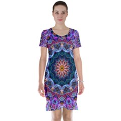 Purple Lotus Short Sleeve Nightdress by Zandiepants
