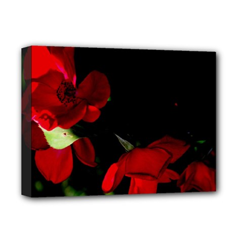 Roses 2 Deluxe Canvas 16  X 12   by timelessartoncanvas