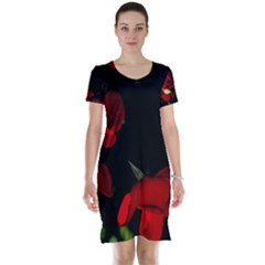 Roses 2 Short Sleeve Nightdress by timelessartoncanvas