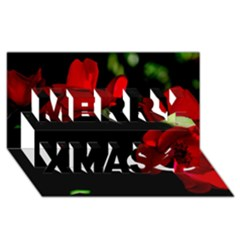 Roses 3 Merry Xmas 3d Greeting Card (8x4)