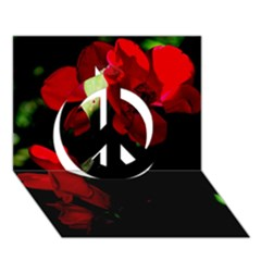 Roses 4 Peace Sign 3d Greeting Card (7x5)  by timelessartoncanvas