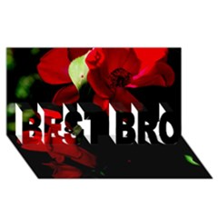 Roses 4 Best Bro 3d Greeting Card (8x4)  by timelessartoncanvas