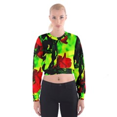 Red Roses And Bright Green 1 Women s Cropped Sweatshirt by timelessartoncanvas