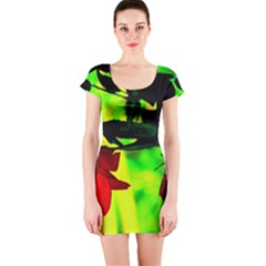 Red Roses And Bright Green 2 Short Sleeve Bodycon Dress by timelessartoncanvas