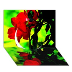 Red Roses And Bright Green 3 Circle 3d Greeting Card (7x5)  by timelessartoncanvas