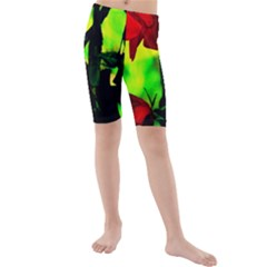Red Roses And Bright Green 3 Kid s Mid Length Swim Shorts by timelessartoncanvas