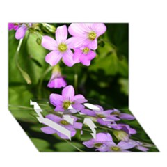 Little Purple Flowers Love Bottom 3d Greeting Card (7x5)  by timelessartoncanvas