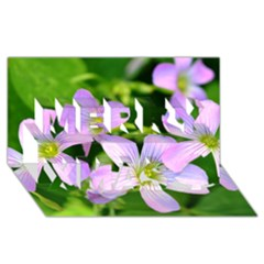 Little Purple Flowers 2 Merry Xmas 3d Greeting Card (8x4)  by timelessartoncanvas