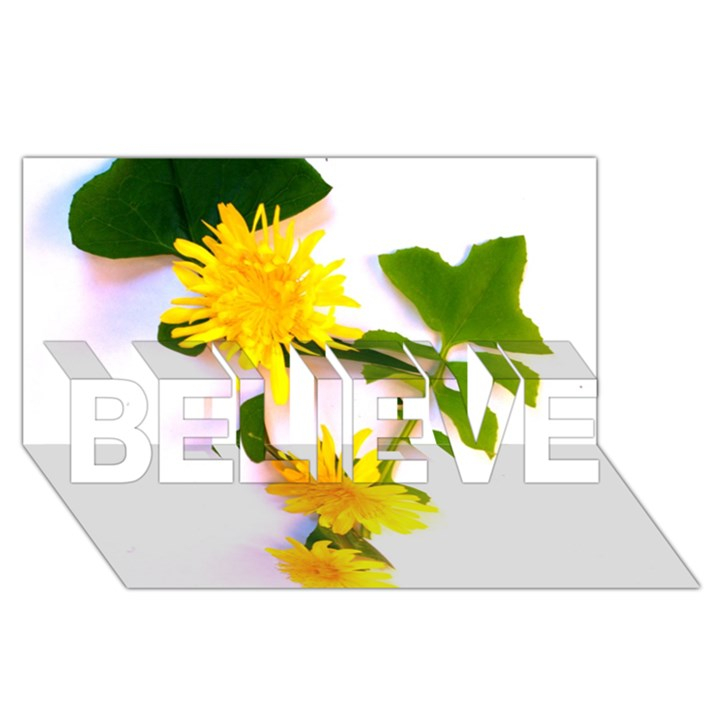Margaritas Bighop Design BELIEVE 3D Greeting Card (8x4)