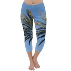 Tropical Palm Tree  Capri Winter Leggings  by BrightVibesDesign
