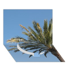 Tropical Palm Tree  Circle Bottom 3d Greeting Card (7x5)