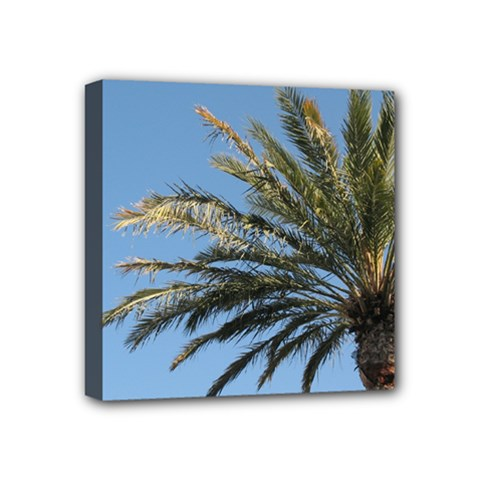 Tropical Palm Tree  Mini Canvas 4  X 4  by BrightVibesDesign