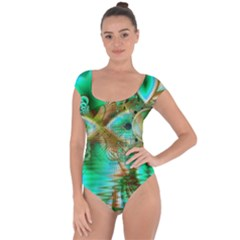 Spring Leaves, Abstract Crystal Flower Garden Short Sleeve Leotard (ladies) by DianeClancy