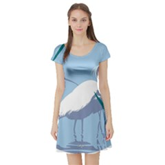 Egret Short Sleeve Skater Dress by WaltCurleeArt