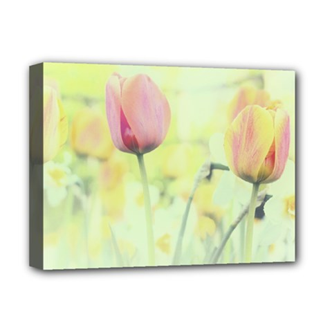 Softness Of Spring Deluxe Canvas 16  X 12   by TastefulDesigns