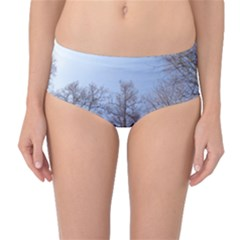 Natural Brown Blue, Large Trees In Sky Mid Waist Bikini Bottoms