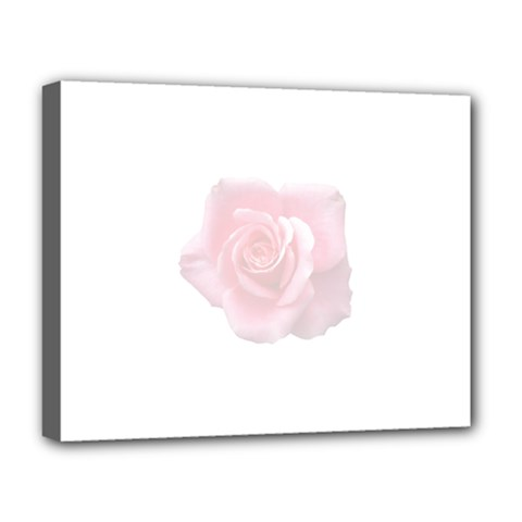 Pink White Love Rose Deluxe Canvas 20  X 16   by yoursparklingshop